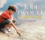 Jodi Picoult-W naszym domu