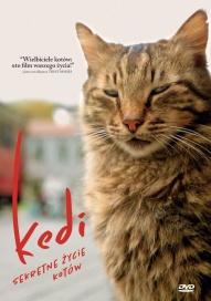 Ceyda Torun-[PL]Kedi - sekretne życie kotów