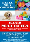Klub Malucha w Bibliotece na Ostrogu